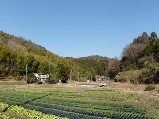 20100301_01_快晴.JPG