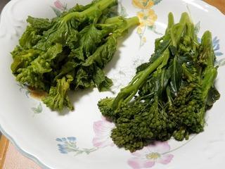 20100301_09_茎ブロッコリーと菜の花.JPG