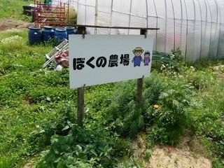 20100617_01_ぼくの農場.jpg