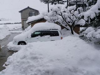 20110128_01_積雪.jpg