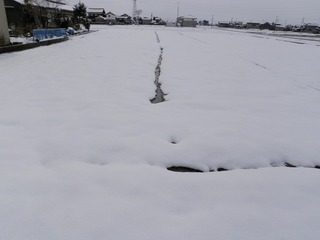 20110305_02_雪解け.jpg