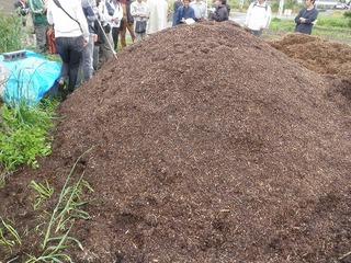 20100515_01_炭素循環農法見学.jpg