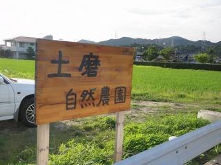 20100703_01_土磨自然農園.jpg